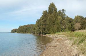 Lake Macquarie State Conservation Area - Accommodation Burleigh