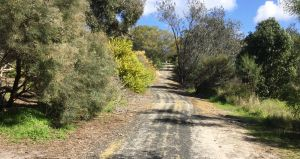 Naracoorte North Nature Park - Accommodation Burleigh