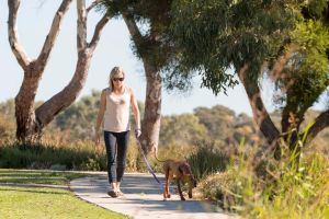 Meningie Walking and Cycling Trails - Accommodation Burleigh