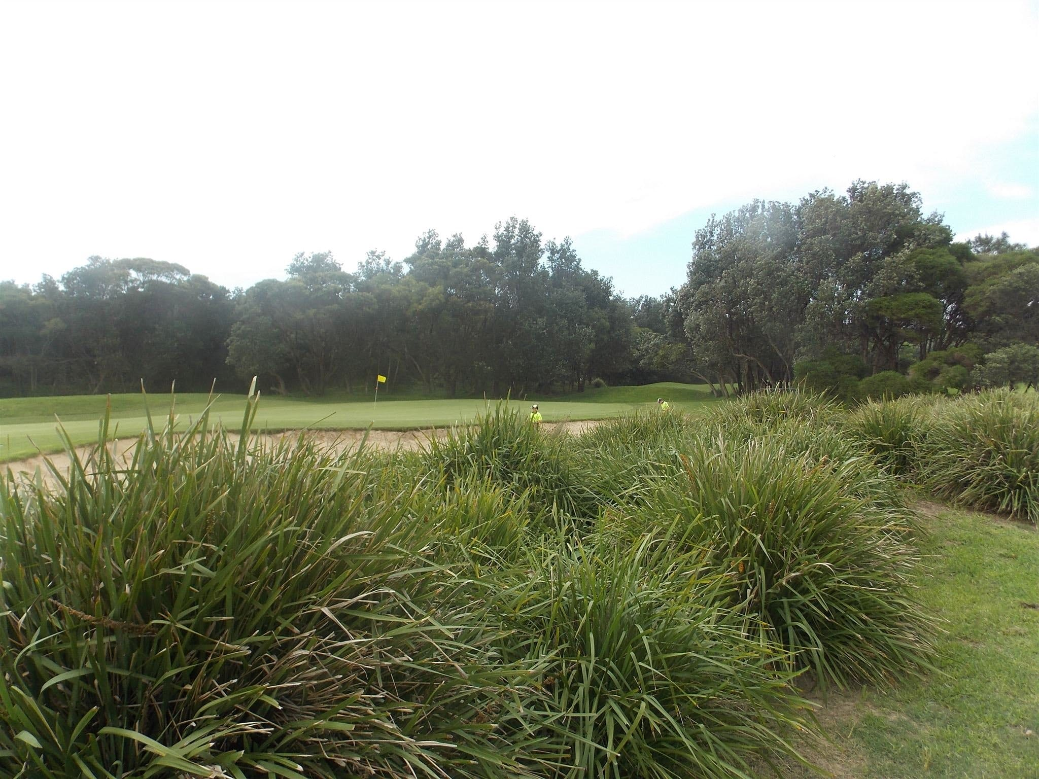 Shoalhaven Heads Golf Club - Accommodation Burleigh