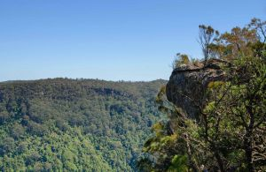 Cooks Nose Walking Track - Accommodation Burleigh
