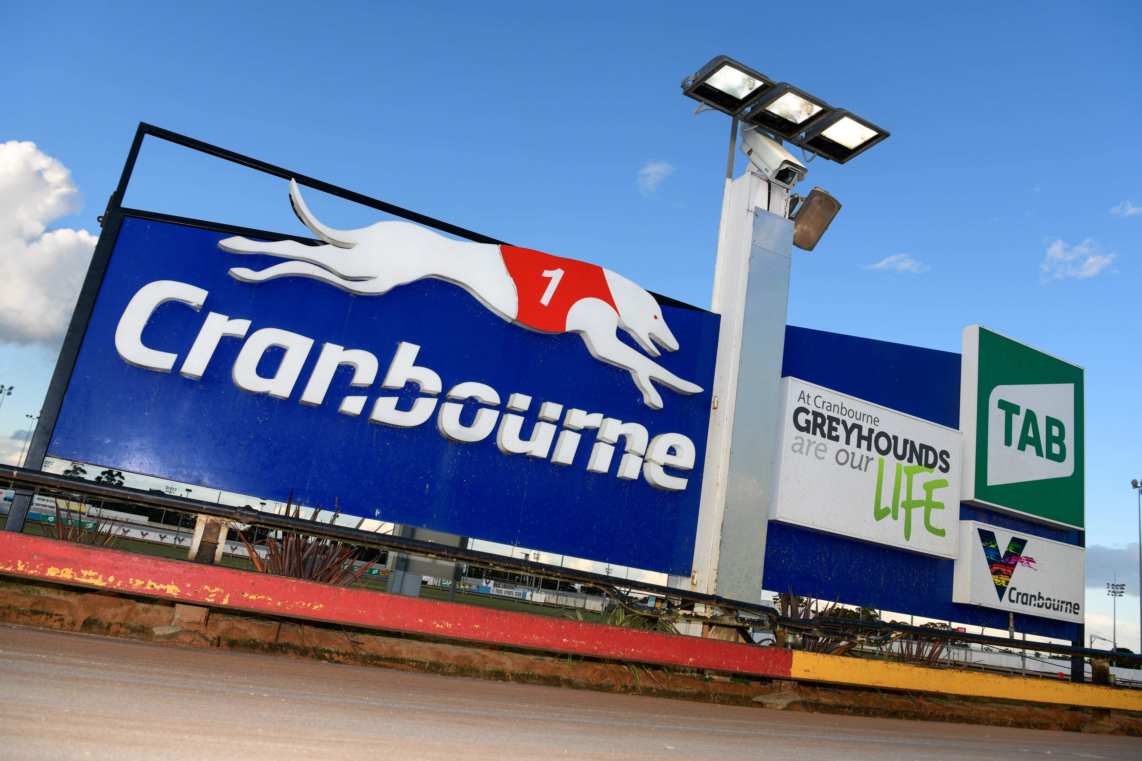 Cranbourne Greyhound Racing Club - Accommodation Burleigh