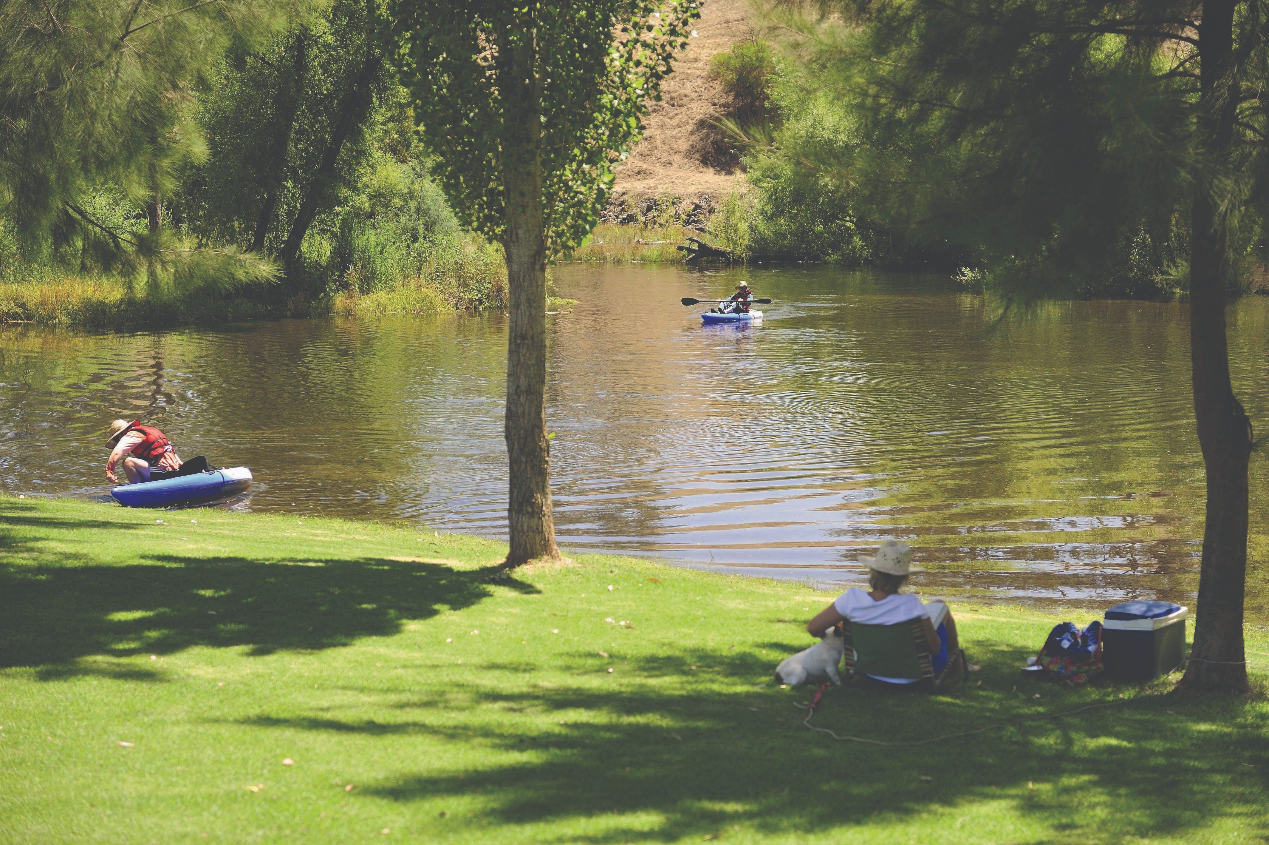 The Lions Junction Park - Tumut - Accommodation Burleigh
