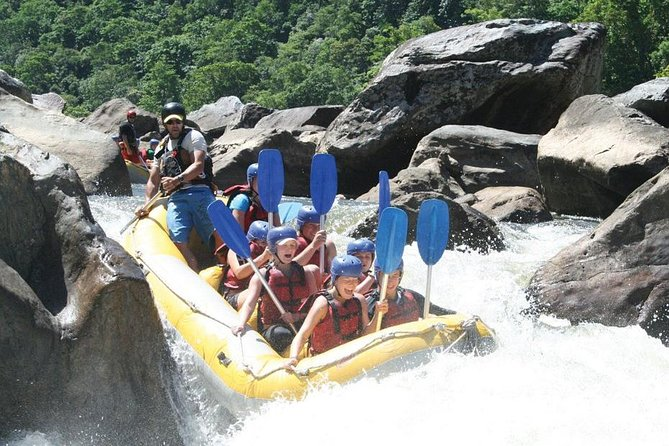 Barron River Half-Day White Water Rafting from Cairns - Accommodation Burleigh