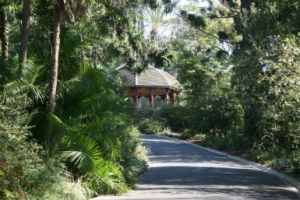 Royal Botanic Gardens Victoria - Accommodation Burleigh