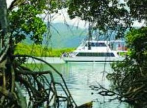 Cairns Harbour Cruises - Accommodation Burleigh