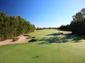 Pelican Waters Golf Club - Accommodation Burleigh