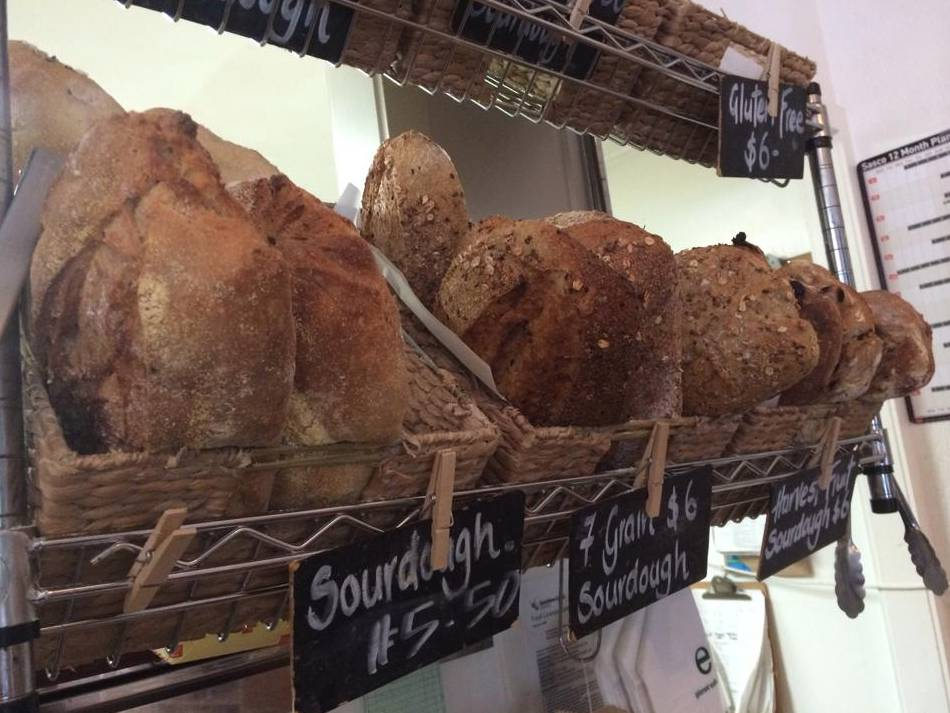 Harvest Breads Cafe - Accommodation Burleigh