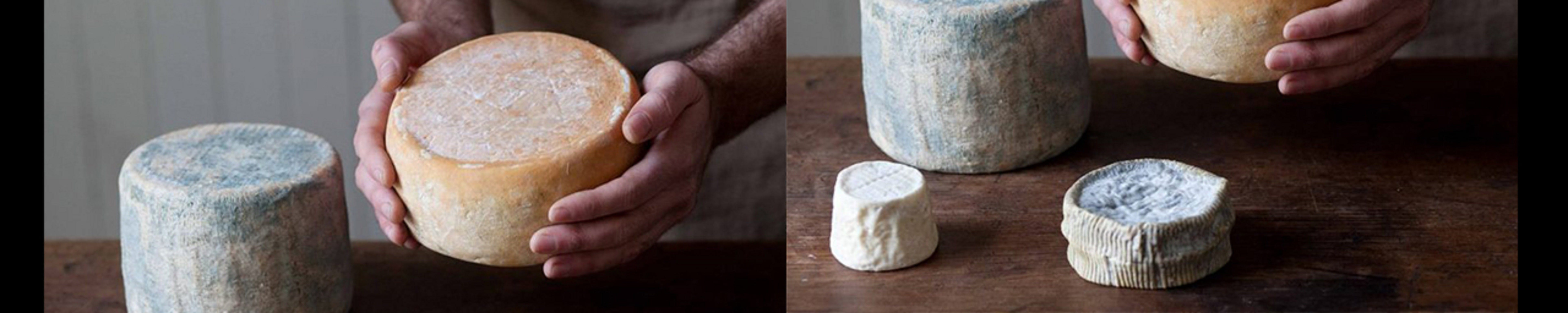 Cheese Making Basics Class - Accommodation Burleigh