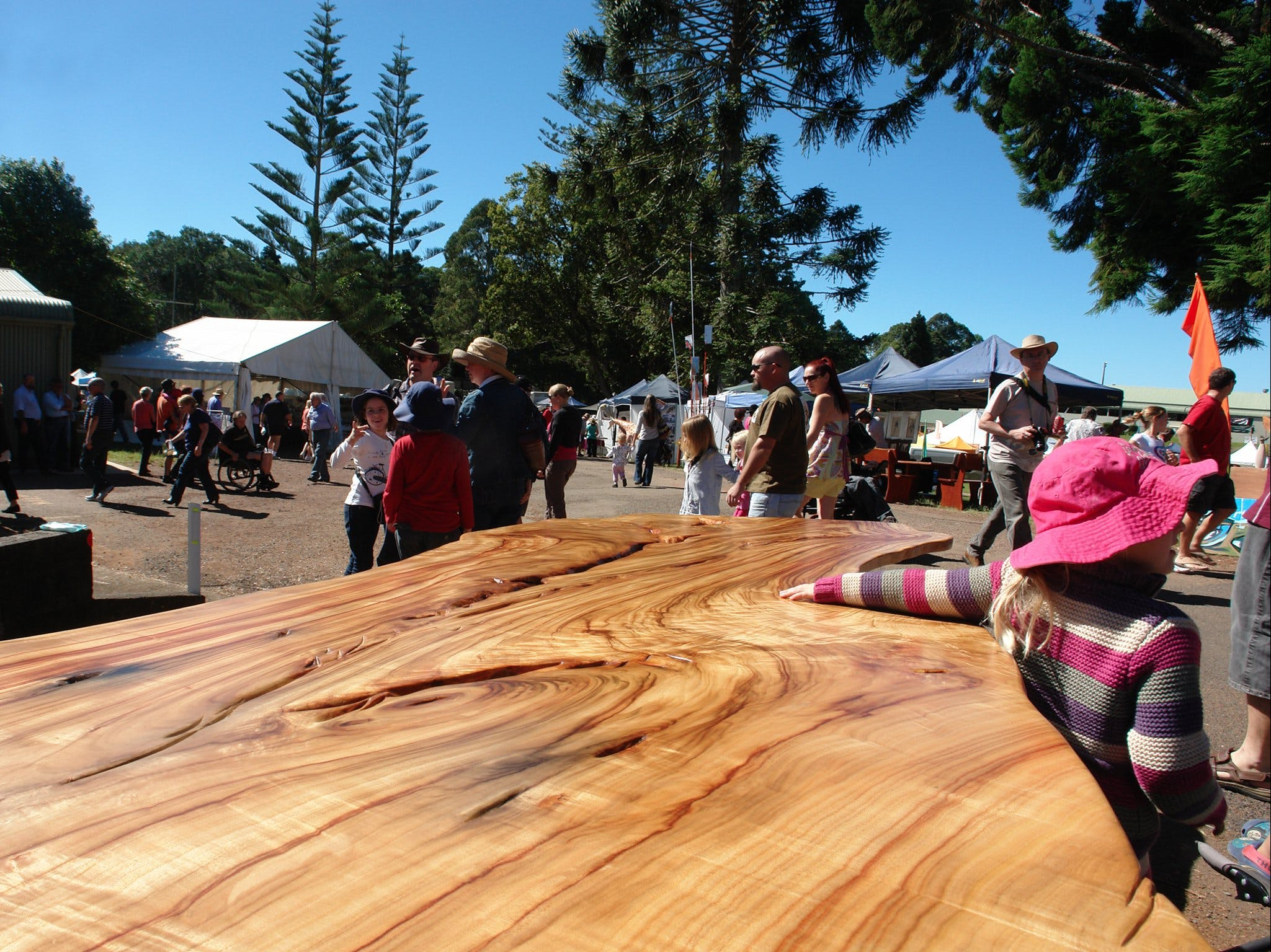 Maleny Wood Expo From Seed to Fine Furniture - Accommodation Burleigh