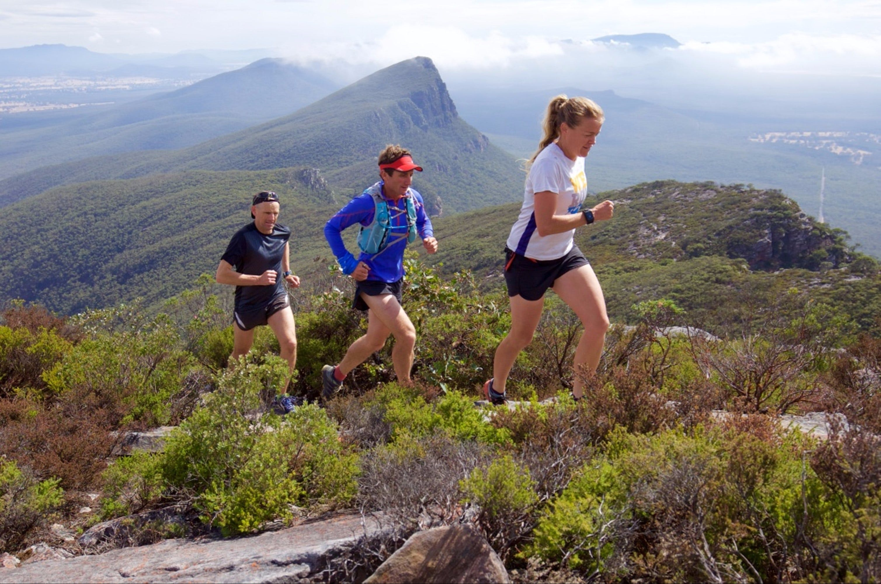 Peaks and Trails Run - Accommodation Burleigh