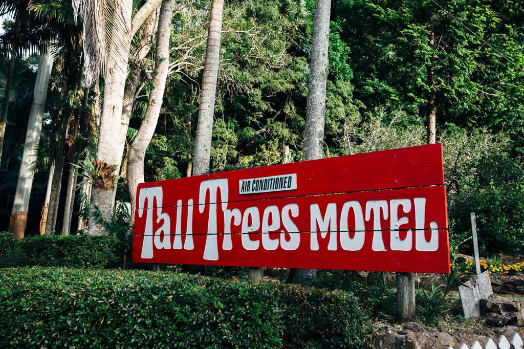 Tall Trees Motel Mountain Retreat Tamborine Mountain