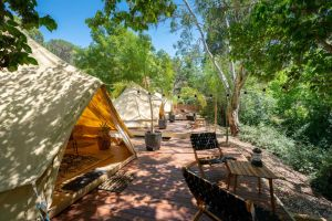 Castlemaine Gardens Luxury Glamping - Accommodation Burleigh