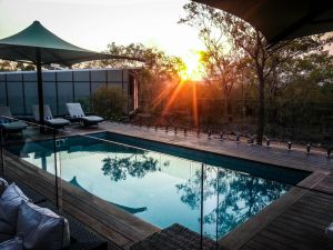 Cicada Lodge - Accommodation Burleigh