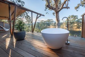 Currajong Retreat - Accommodation Burleigh